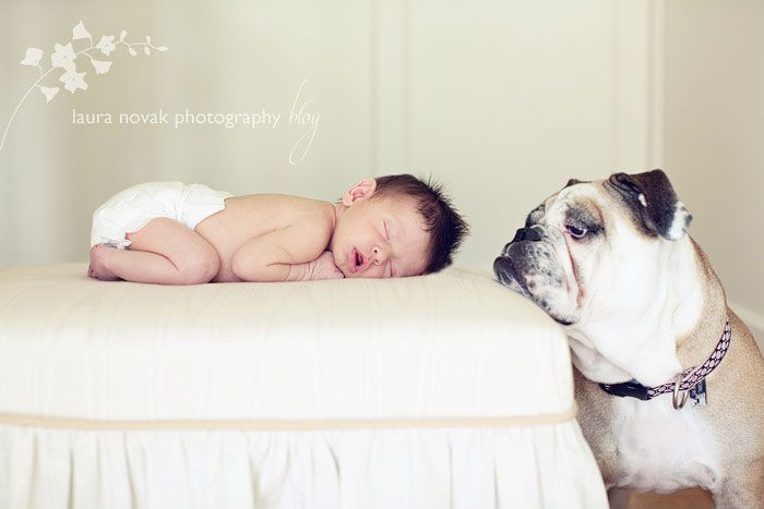 Is there anything cuter than babies and puppies? I think not! By Laura Novak.