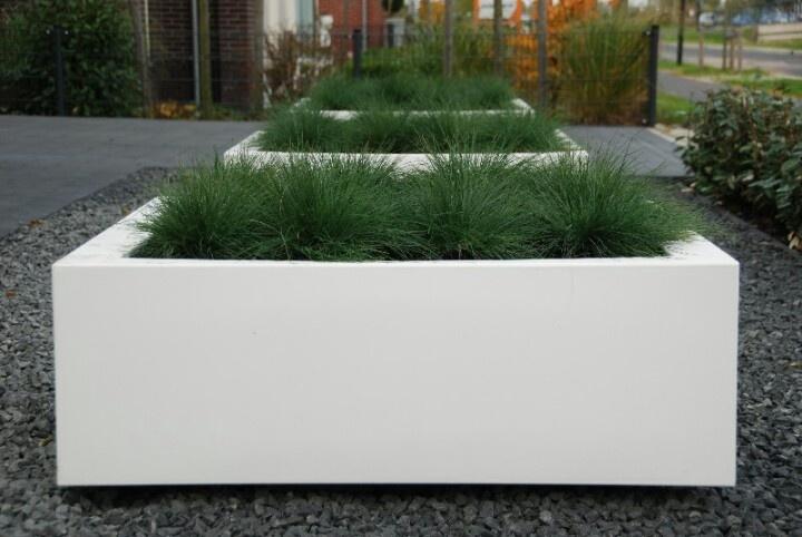 Plantenbakken met grassen