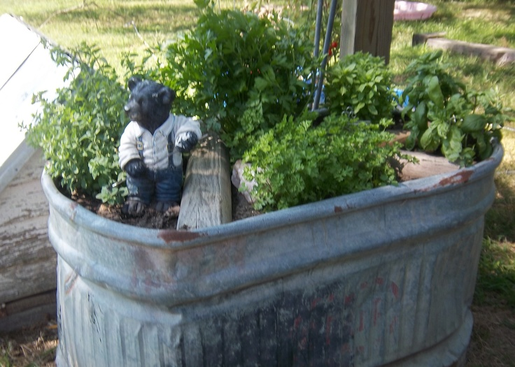 Recycled Stock Tank Made A Perfect Kitchen Herb Garden