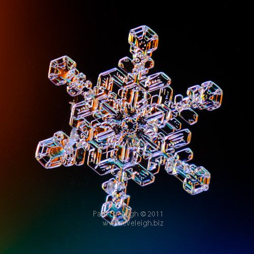 this lady on Flickr takes the most amazing photos of snowflakes every winter, I always look forward to the first snow of the year!