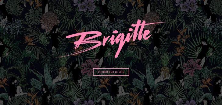 Brigitte cool music web design seen on http://www.webdesign-inspiration.com/web-design/brigitteofficiel-com-24624