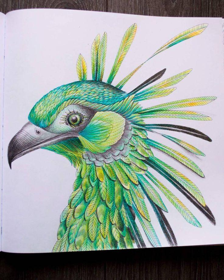Milliemarotta Wildsavannah Bird Adultcoloringbook Adultcoloringbooks Relax Pencils Draw