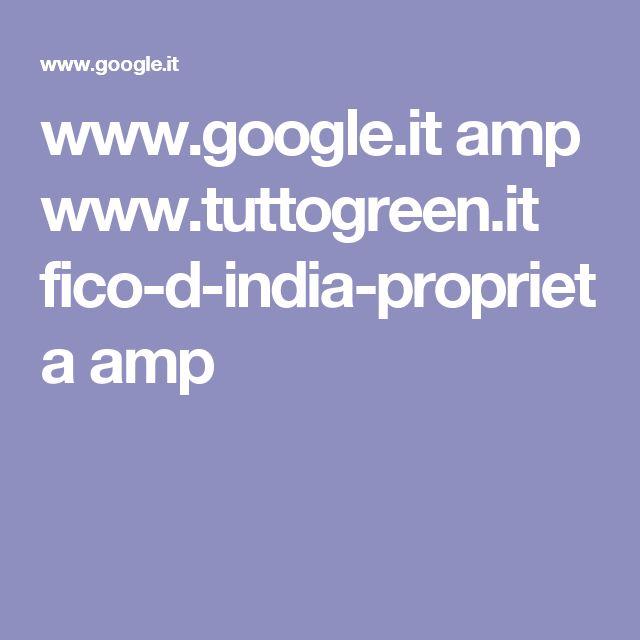 www.google.it amp www.tuttogreen.it fico-d-india-proprieta amp