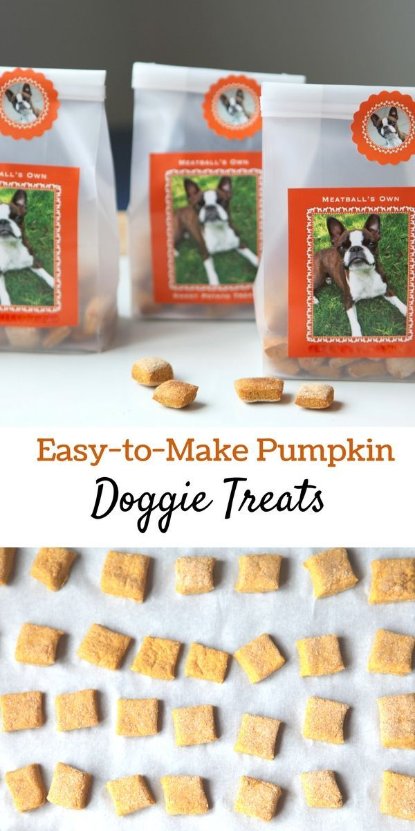 Three-Ingredient Pumpkin Dog Treats That Fido Will Love! Pumpkin is a healthy source of fiber and nutrients for dogs. It helps them digest meat and bones, especially when they are on a raw food diet. More importantly, pumpkin is a natural remedy for, well, flatulence in dogs. It's not a pretty subject to read about, but it's even less pleasant to experience in person. #sponsored