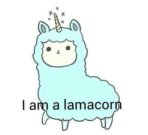 Soo cute! :O