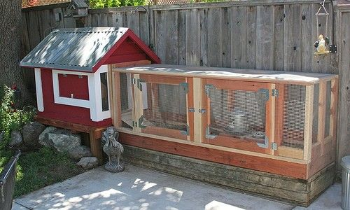 Backyard Chickens Portable Chicken Coop Building Plans