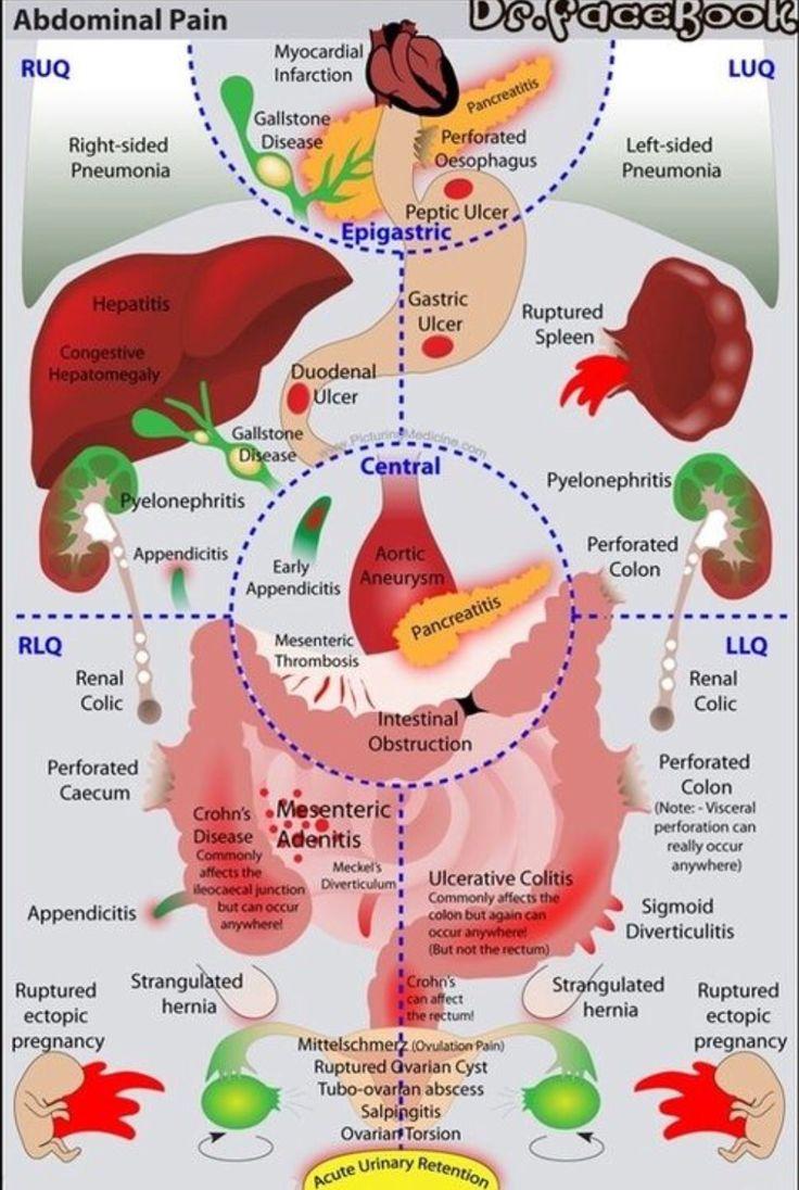 Pin on hereditary angioedema hae