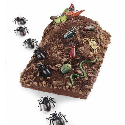 17 Best Ideas About Bug Birthday Cakes On Pinterest
