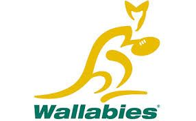 Image result for wallabies