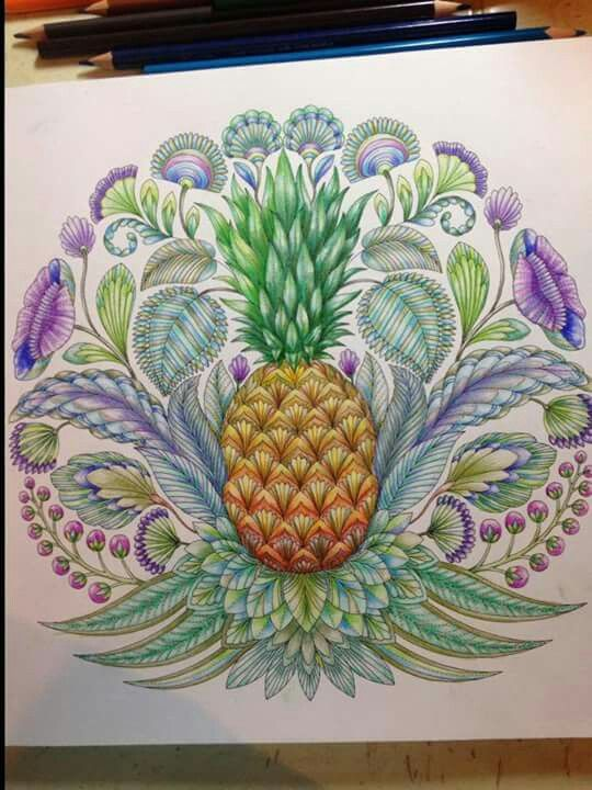 41 Best Tw Ananas Images On Pinterest