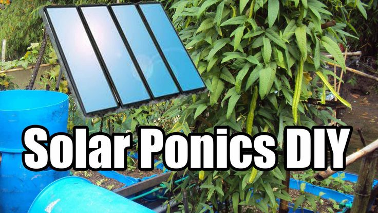 Solar Powered Aquaponics : How to Build a solar powered IBC tote Aquaponics System CHEAP and EASY.