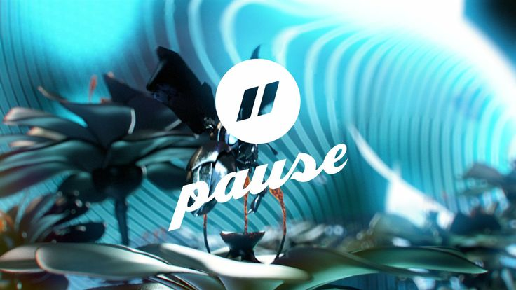 Pause Fest 2014 ID - Colony Collapse Disorder
