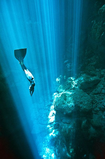 17 Best Images About Free-diving Apnea On Pinterest