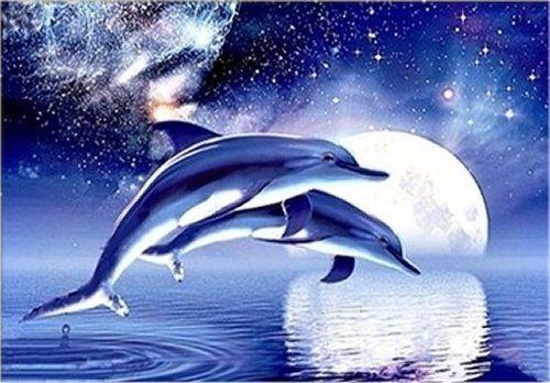 5D DIY Diamond Painting Dolphin, 5D DIAMOND PAINTING