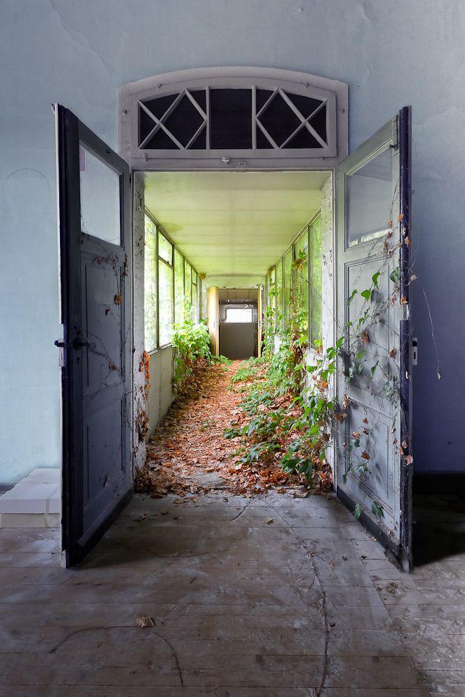 .The door to the alley of plants.