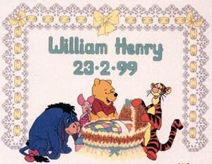 Winnie The Pooh Born conunted cross stitch