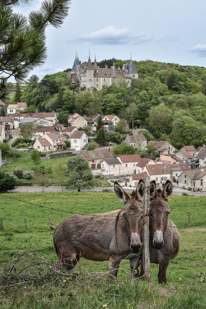 France, Bourgogne, Rochepot