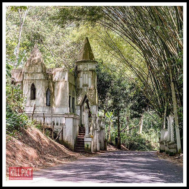 Une église sous les bambous...