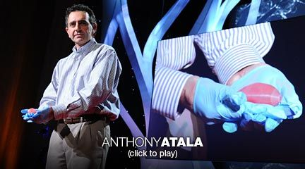 Anthony Atala: Printing a human kidney  Surgeon Anthony Atala demonstrates an early-stage experiment that could someday solve the organ-donor problem: a 3D printer that uses living cells to output a transplantable kidney. Using similar technology, Dr. Atala's young patient Luke Massella received an engineered bladder 10 years ago; we meet him onstage.