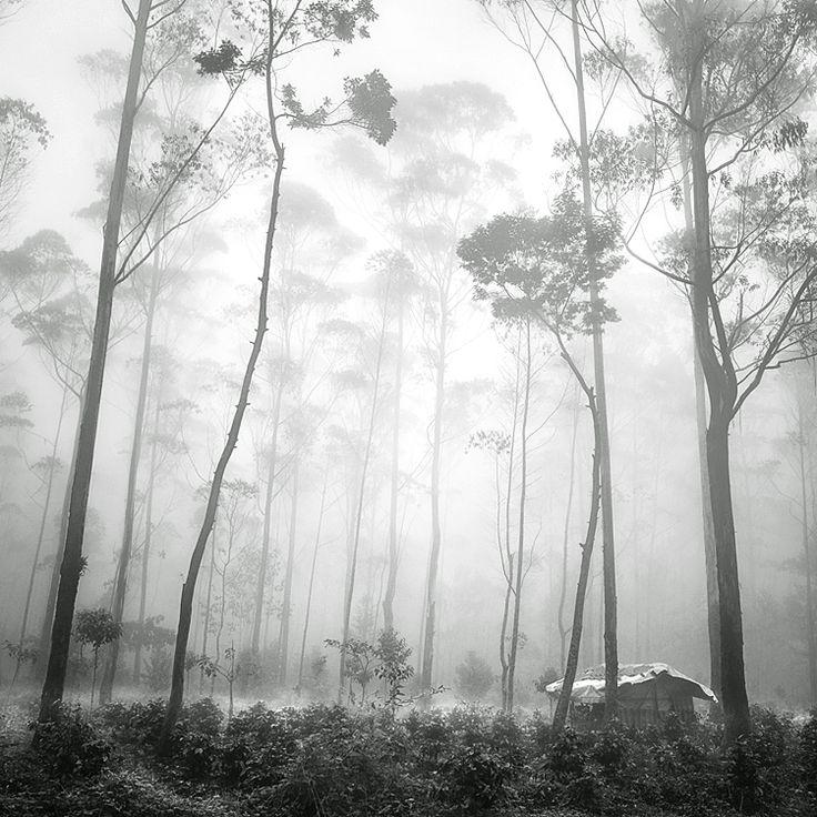 Hut photography digital by hengki koentjoro black and white