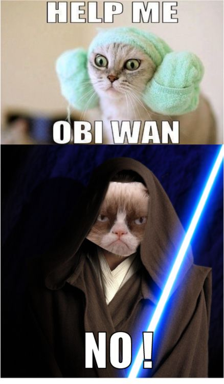 Grumpy Cat Obi Wan - lots of hilarious Star Wars/Grumpy Cat memes