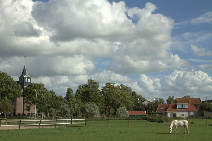 Dit is Wjelsryp een dorp in het hart van Friesland, het lijkt er rustig maar vergis je niet. Er is een manege een sportveld een dorpshuis veel bedrijven, grote en kleine boerderijen en een mooi kerkje uit de 12e eeuw. Het is een terpdorp en heeft 500 inwoners .Meer over Wjelsryp op www.Plaatsengids.nl/Wjelsryp