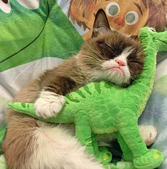 The sweetest thing ever! Tartar Sauce and her Dino.