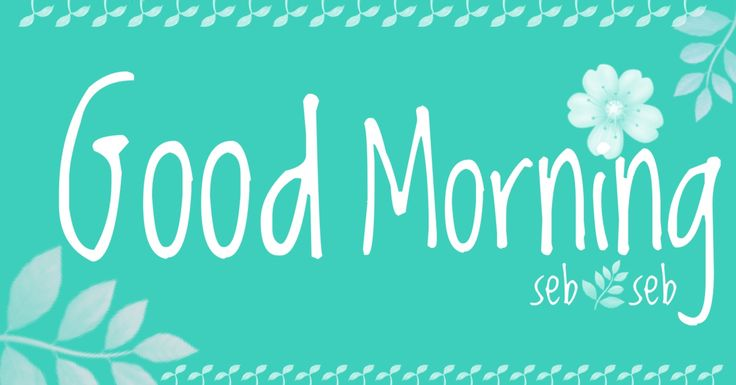 Good morning - seb