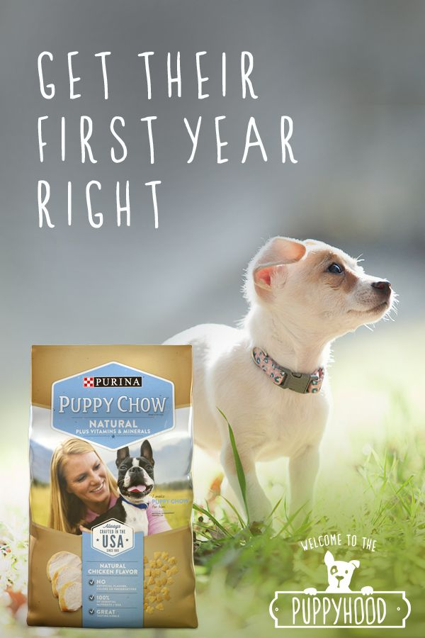 The first years of a puppy's life are the most important. Setting their bodies on the right track for a long and healthy life is one of the greatest gifts you can give, and there's no better way to do it than with Purina Puppy Chow Natural. Visit Purina.com to learn more.
