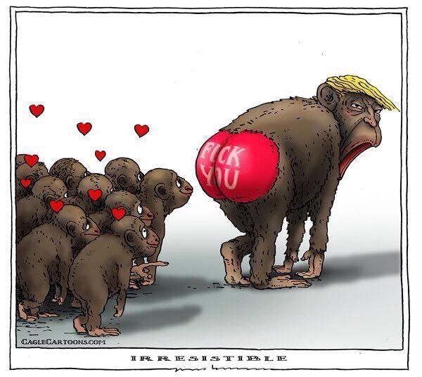 """Trumpanzies who are 'attracted' to his political views such as refusing to curtail greenhouse gas emissions """" Fuck it, we can move to Mars when the Earth is fucked !! ( well SOME of us can !! ) """" He's a wee monkey isn't he ? He sees no evil, refuses to hear about evil but is gr8 at DOING evil !! 4 long years of Trump convincing American voters to leave him in his 'bought and paid for' White House ? Commander in chief with his finger hovering over the big red nuclear button ? He told the…"""