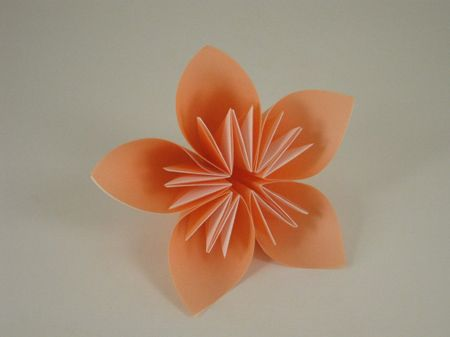 Origami flowers- i love making these! Easy and beautiful, and you can make them with as many petals as you want!
