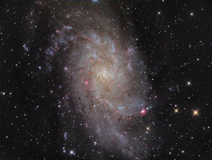 41 отметок «Нравится», 1 комментариев — Linda's Favourite (@lindasfavourites) в Instagram: «M33: Triangulum Galaxy #triangulum #galaxy  #instafollow #followme #love #universe #igers #amazing…»