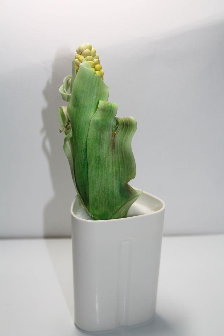 Кукуруза... Сахарная лепка (мастика)