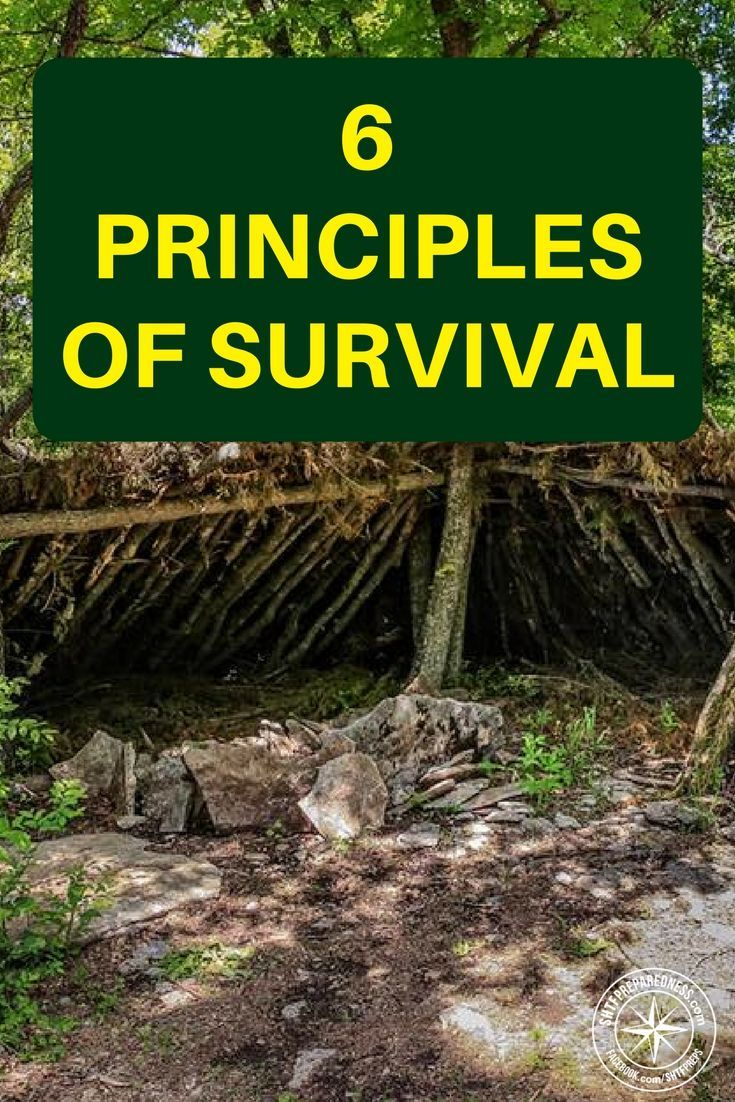 6 Principles of Survival – Maintain Core Body Temperature - If you are looking to glean your own base line of information on the topic of core body temperature and how to maintain it. There is a great selection of shelters along with information on the science of your core body temperature.