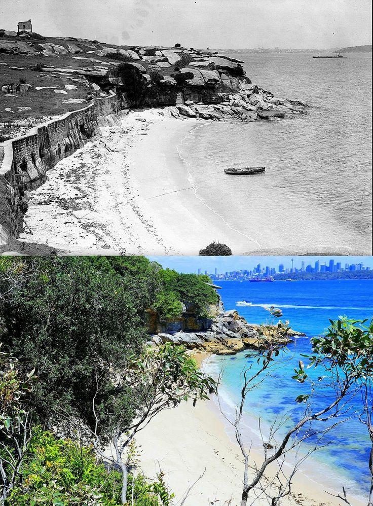 Lady Jane Beach, Watson's Bay 1927 > 2017. [National Library of Australia > Kevin Sundgren. By Kevin Sundgren]