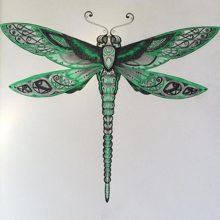 """This is my dragonfly #drawing #dragonfly #johannabasford #enchantedforest #colouringbook #colours #addicted #art  @swesworld"""