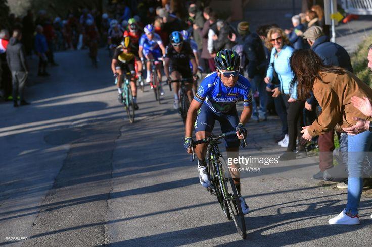 #Tirreno 52th Tirreno - Adriatico 2017 / Stage 5 Nairo QUINTANA (COL) Blue Leader Jersey / Geraint THOMAS (GBR)/ Primoz ROGLIC (SLO)/ Thibaut PINOT (FRA)/ Rieti - Fermo (210Km)/
