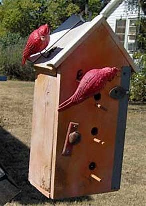 image result for red cardinal bird house plans birdhouseplans rh pinterest ca