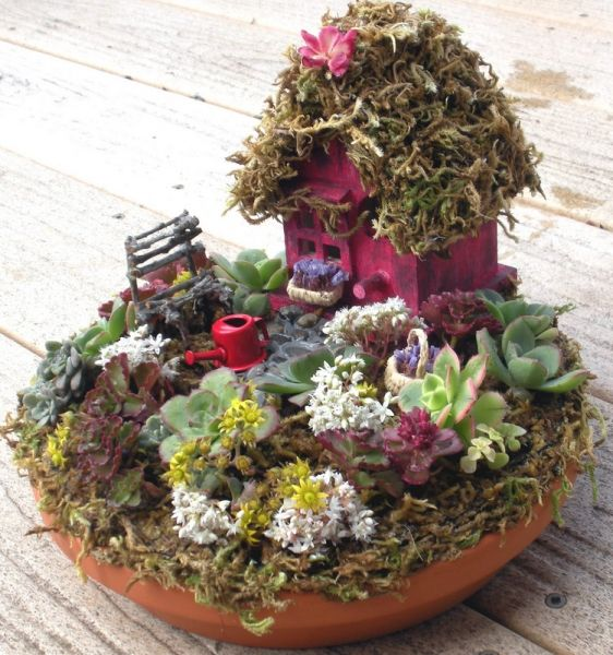Fairy Garden. I want my Fairy house like this with stuff growing on it. Also love the large variety of plants.