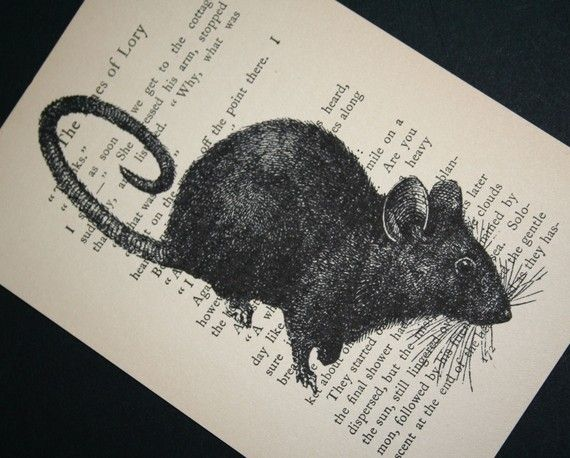 Mouse print on salvaged vintage book pageMice, Vintage Books, Salvaged Vintage, Mouse Prints, Art Architecture, Artists Inspiration, Neat Prints, Book Pages, Crowbiz