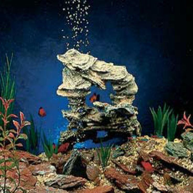 25 best ideas about aquarium rocks on pinterest for Aquarium decoration paint