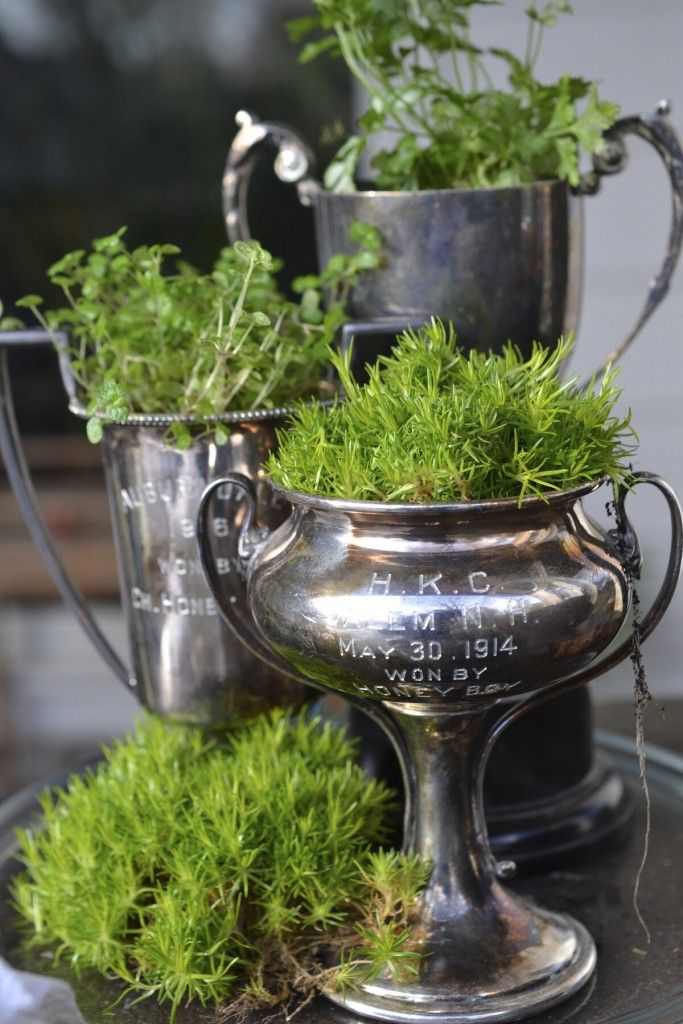 A grouping of similar objects clustered together and filled with herbs and unique greenery makes a very attractive composition.