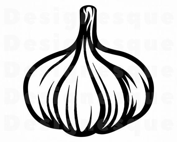 Garlic Svg Garlic Clipart Garlic Files For Cricut Garlic Etsy In 2021 Clip Art Svg Drawing Expressions