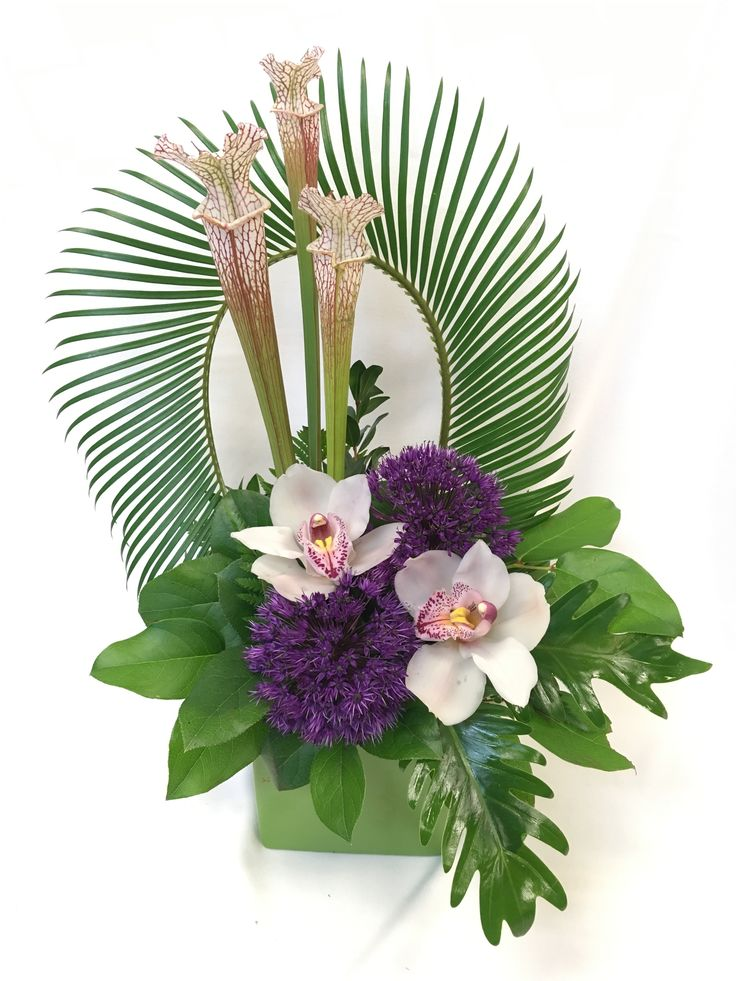 Pin By Ummy Wardah On Floral Design Tropical Flower