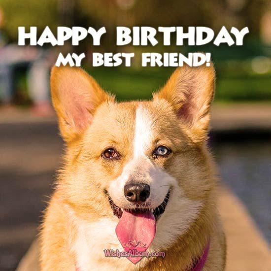 Happy birthday my Friend! #birthday #HAPPYBIRTHDAY #BirthdayParty #birthdaygirl #birthdayboy  http://www.wishesalbum.com/happy-birthday-wishes-friends/