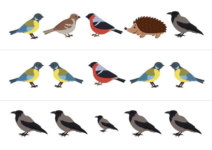 Дидактическая игра «Кто не птица?»