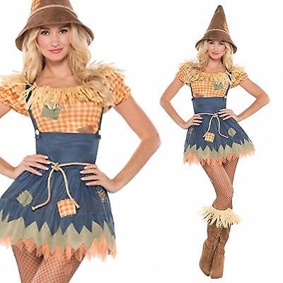 Adult #wizard sultry scarecrow costume sexy ladies #fancy dress #outfit new uk 8-, View more on the LINK: http://www.zeppy.io/product/gb/2/311379688620/