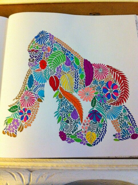 Millie Marotta Les Animaux Fantastiques Colouring PagesColoring BooksColour TherapyOctopusesAdult ColoringAnimal KingdomMonkeyJohanna BasfordTropical