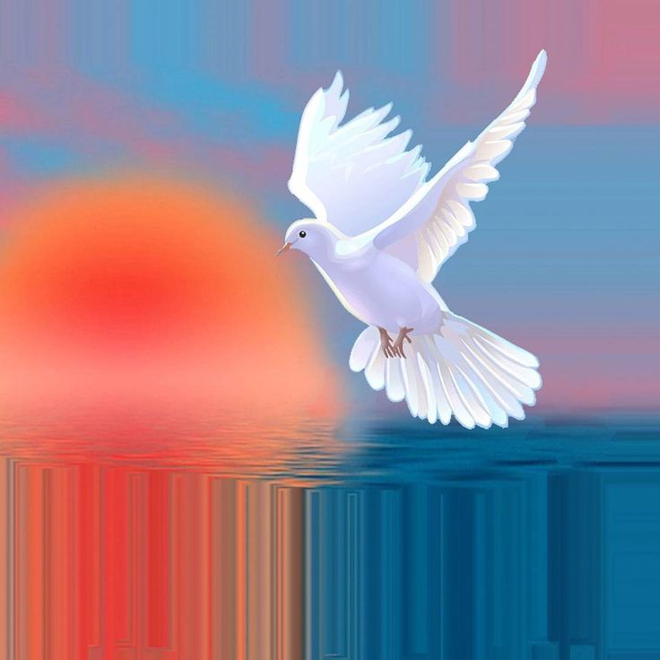 The white dove flutters its wings to remind us, that greed for counting pennies is fear of not enough.....Oriana W.