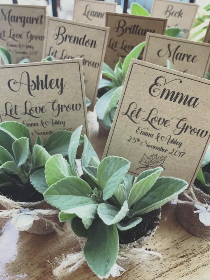 Let love grow ...guest gifts